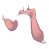 https://www.eldarya.it/assets/img/item/player/icon/123000f253f48406bb4d337a0c7a580a.png