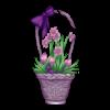 https://www.eldarya.it/assets/img/item/player/icon/20d423ec4617035d511724b863c788a0~1491842932.png