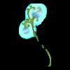 https://www.eldarya.it/assets/img/item/player/icon/7da88046225b2005769e1694cb9dffe6~1491814253.png